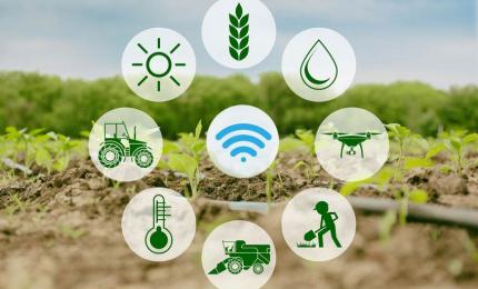 Smart Farming- IoT Applications in Agriculture